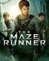 The Mazie Runer 2014