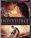 Indivisible 2018