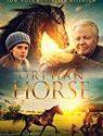 Orphan Horse 2019