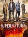 Supernatural Season 12 2016