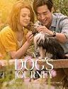 A Dogs Journey 2019