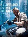 A Bluebird in My Heart 2019